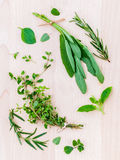 Various fresh herbs from the garden holy basil , basil ,rosemary,oregano, sage and thyme over rustic wooden background. stock photography