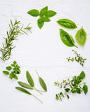 Various fresh herbs from the garden peppermint , sweet basil ,rosemary,oregano, sage and lemon thyme on white wooden background w. Ith flat lay and copy space stock photos