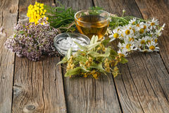 Various fresh herbs hanging on table Stock Photography