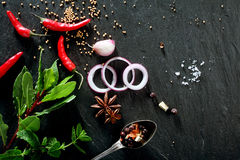 Various Fresh Herbs, Spices and Garnishes Royalty Free Stock Photos