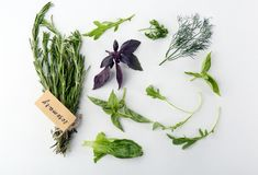 Various fresh herbs. On white background royalty free stock image