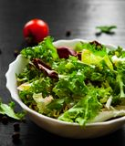 Fresh mix salad leaves with lettuce, radicchio, and rocket in bowl on dark wooden background. Various fresh mix salad leaves with lettuce, radicchio, and rocket Stock Images