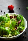 Various fresh mix salad leaves with lettuce, radicchio, and rocket in bowl. On dark wooden background Stock Photography