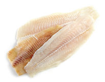 Various fresh raw fish fillet. Pangasius and  bream raw fish fillet Stock Images
