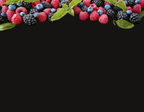 Various fresh summer berries isolated on black background. Ripe blueberry, raspberry and blackberry with basil leaves. Berries at border of image with copy Royalty Free Stock Photos
