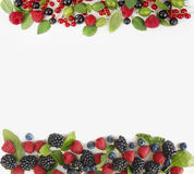Various fresh summer berries isolated on white background. Ripe blueberry, raspberry, currant and blackberry with basil leaves. Berries at border of image with Stock Images