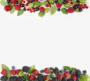 Various fresh summer berries isolated on white background. Ripe blueberry, raspberry, currant and blackberry with basil leaves. Berries at border of image with Stock Image