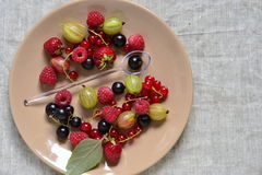 Various fresh summer berries on the plate Royalty Free Stock Photography
