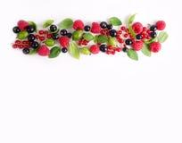 Various fresh summer berries. raspberries, gooseberries, currants and greens. Stock Photography