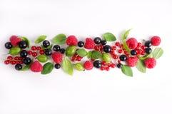 Various fresh summer berries. Raspberries, gooseberries, currants and greens. Royalty Free Stock Photos