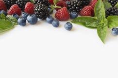 Various fresh summer berries. Ripe blueberries, raspberries and blackberries. Berries on white background. Top view Royalty Free Stock Photo