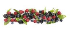 Various fresh summer berries. Ripe blueberries, raspberries and blackberries. Berries on white background. Top view Royalty Free Stock Photos