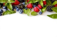 Various fresh summer berries. Ripe blueberries, raspberries and blackberries. Berries on white background. Top view with copy space Stock Image
