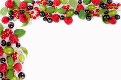Various fresh summer berries. Ripe raspberries, currants, gooseberries, mint and basil leaves. Berries on white background. Top view Royalty Free Stock Images