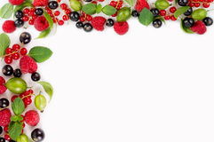 Various fresh summer berries. Ripe raspberries, currants, gooseberries, mint and basil leaves Royalty Free Stock Photography