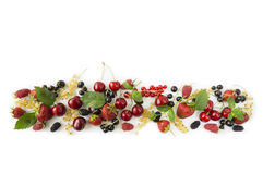 Various fresh summer berries. Ripe strawberries, redcurrants, blackcurrants, mulberries, raspberries and cherries on white background. Berries at border of image Stock Photos