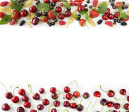Various fresh summer berries. Ripe strawberries, redcurrants, blackcurrants, mulberries, raspberries and cherries on white background. Berries at border of Stock Photos