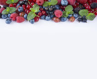 Various fresh summer berries on white background. Royalty Free Stock Photos