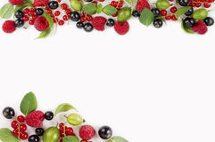 Various fresh summer berries on white background. Ripe raspberries, currants, gooseberries, mint and basil leaves. Berries at border of image with copy space Royalty Free Stock Image