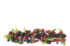 Various fresh summer berries on white background. Top view. Various fresh summer berries on white background. Ripe blueberries, raspberries and blackberries Royalty Free Stock Image
