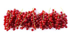 Various fresh summer fruits. Ripe red currants on white background. Ripe red currant. S isolated on white background. Red berries. Top view. Background berries Stock Photos