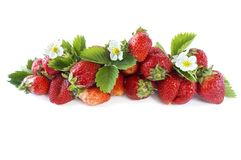 Various fresh summer fruits. Ripe strawberries on white background. Strawberries with copy space for text. Background berries Stock Photography