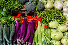 Various fresh vegetable. Fresh vegetable, cabbage, eggplant and others for maketing sales, shown as objective in intersting color and shape, raw and fresh fruit Stock Images