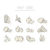 Various fruit icons in grey Royalty Free Stock Photos