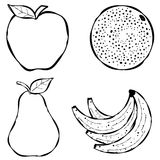 Various Fruit Line Art. An illustration featuring an assortment of fruits - apple, orange, pear and bananas. Line art (black and white illustrations) are perfect Royalty Free Stock Photography