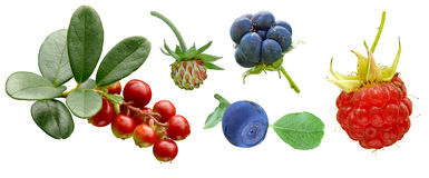 Various fruit set Royalty Free Stock Photography