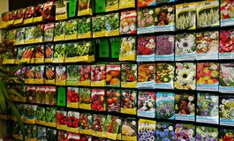 Packets of Seeds for planting in Spring. Various fruit ,vegetable and flower seed packets in a gardening shop .uk Royalty Free Stock Images