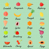 Various Fruits with the Names. Various Fruits made in Flat Style with the Names on the Textured Background. Vector EPS 10 Royalty Free Stock Image