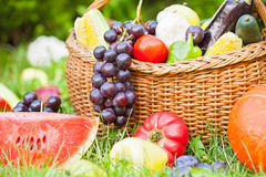 Various fruits and vegetables Stock Image