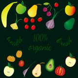 Various fruits and vegetables on dark background, text - organic. vector illustration