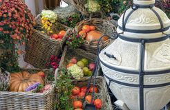 Various fruits and vegetables in wicker baskets. Gifts of autumn stock image