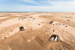 Various garbage on the sandy seashore thrown ocean waves. Yellow sand and blue sky. Wide angle. Stock Image