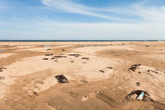 Various garbage on the sandy seashore thrown ocean waves. Yellow sand and blue sky. Wide angle. Stock Images