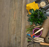 Various garden tools Royalty Free Stock Photography