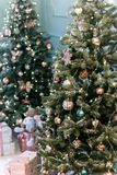various gifts are under beautiful Christmas trees royalty free stock images