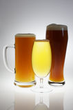 Various glasses of different beers Stock Photography