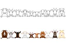 Various goats head border set. Various goats heads in a row, domestic  goats heads border with and without colors set stock illustration