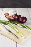 Various grades of onions: white, yellow, red onions, shallot, th. E shredded green onions on a chopping board on a white wooden table Stock Photography