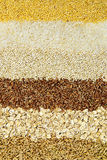 Various grains close up Royalty Free Stock Photo