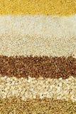 Various Grains Close Up Royalty Free Stock Photo