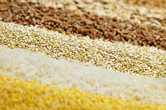 Various grains close up Royalty Free Stock Images