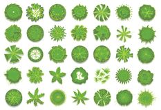 Various green trees, bushes and shrubs, top view for landscape design plan. Set of vector illustrations, isolated on a. Various green trees, bushes and shrubs Stock Images