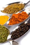 Various ground spices Royalty Free Stock Images