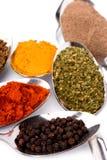 Various Ground Spices Stock Photos