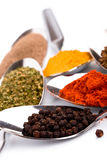 Various ground spices Royalty Free Stock Photo