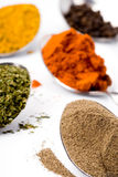Various ground spices Stock Photo